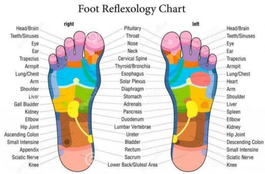 Online Reflexology of the Hands and Feet Course