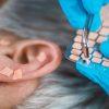 Online Ear Seeding Course