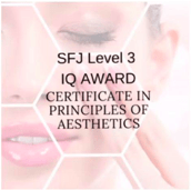 Pathway to Aesthetics Course SFJ Level 3 IQ Award